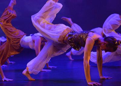 Dansfeest 2014