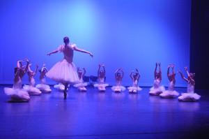 Dansfeest donderdagavond 17-04-2014 (0088)